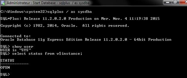 Nom : Oracle01.jpg Affichages : 10085 Taille : 44,3 Ko