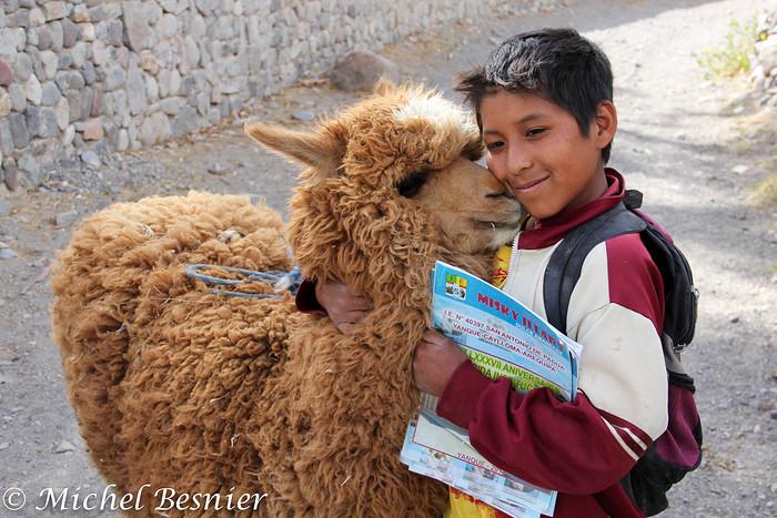 Nom : Garçon péruvien et son petit lama.jpg Affichages : 547 Taille : 153,6 Ko