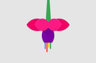 Nom : google-fuchsia-331x219.png