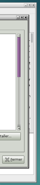 Nom : scrollbars.png