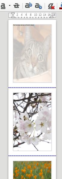 Nom : LibreOffice Writer FondsPage.png Affichages : 81 Taille : 123,8 Ko