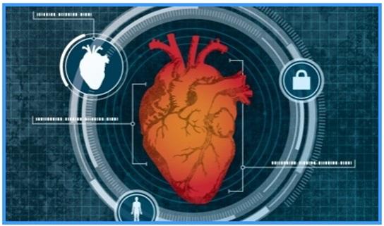 Nom : heart.jpg Affichages : 1559 Taille : 67,6 Ko
