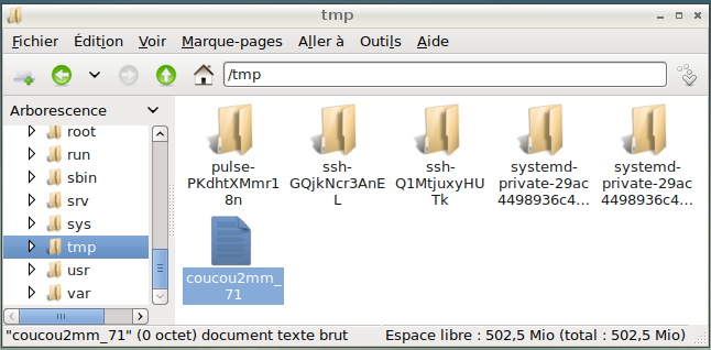 Nom : fichier_dans_live.png Affichages : 32 Taille : 42,4 Ko