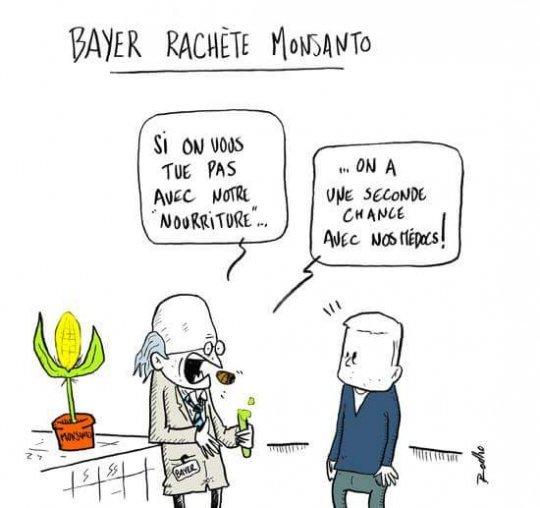 Nom : Bayer-Monsanto.png Affichages : 31 Taille : 805,5 Ko