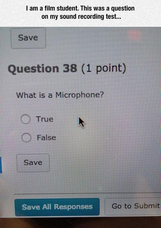 Nom : funny-true-false-question-test-online.jpg Affichages : 450 Taille : 105,3 Ko