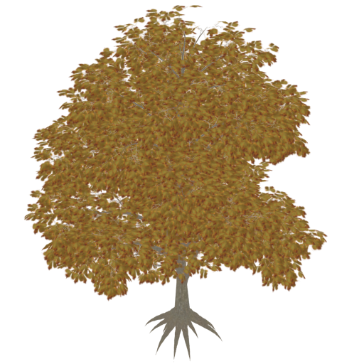 Nom : tree_albedo.png Affichages : 520 Taille : 355,2 Ko