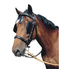 Nom : cheval.jpg Affichages : 224 Taille : 7,1 Ko