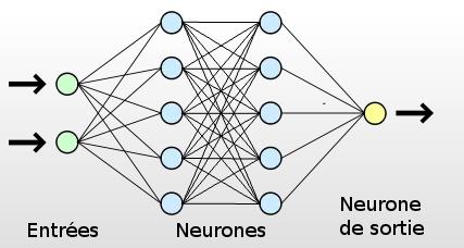 Nom : neurones.png Affichages : 4376 Taille : 30,5 Ko