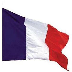 Nom : drapeau-france.jpg Affichages : 3859 Taille : 9,6 Ko