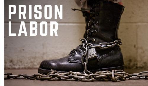 Nom : Prison-Labor-2 (1).jpg Affichages : 1801 Taille : 24,1 Ko