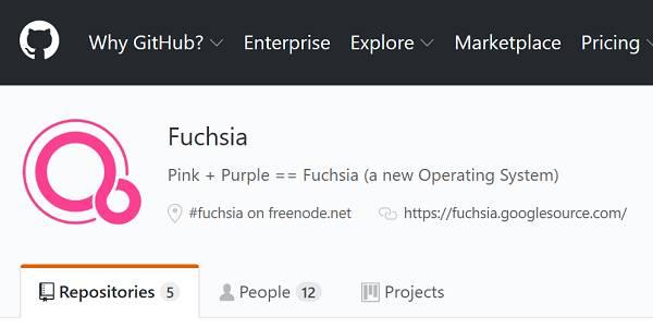 Nom : fuchsia-github.jpg Affichages : 4498 Taille : 17,0 Ko