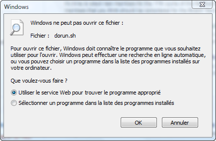 Executer Un Programme C Sous Windows Avec Netbeans