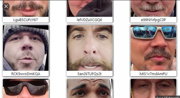 Nom : Screenshot_2021-01-25 This Site Published Every Face From Parler's Capitol Riot Videos – Recherc.png Affichages : 1546 Taille : 415,3 Ko