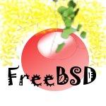 Les utilisateurs apprentis ou avancés des systèmes Berkley : FreeBSD, OpenBSD, NetBSD.
