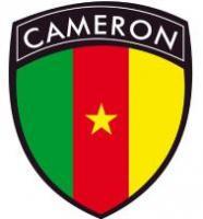 Développeurs du cameroun