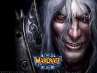 Pour les fans du jeu de stratégie temps réel de Blizzard sorti en 2002.