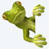 Avatar de Gecko